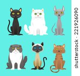 Stock vector cat breed set with black cat white cat grey cat grey and white cat brown and black act brown 221926090