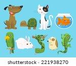 Animal Set  With Dog  Turtle ...