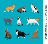 set of vector cats depicting... | Shutterstock .eps vector #221981209