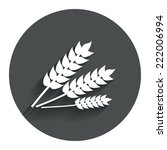 agricultural sign icon. gluten...