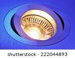 macro detail of a warmwhite cob ...   Shutterstock . vector #222044893