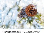 Winter Background With Pine...