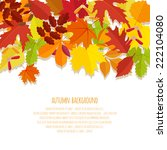 banner with autumn foliage... | Shutterstock .eps vector #222104080