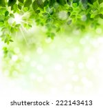 summer branch with fresh green... | Shutterstock .eps vector #222143413