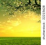 beautiful sunset | Shutterstock . vector #22215628