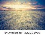 vintage stubble field landscape | Shutterstock . vector #222221908