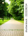 the stone path in the park. the ... | Shutterstock . vector #222228214
