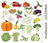 set of vegetables. icons... | Shutterstock .eps vector #222233860