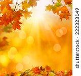 autumn maple falling leaves    Shutterstock . vector #222323149