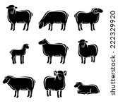 sheep and lamb set. vector  | Shutterstock .eps vector #222329920