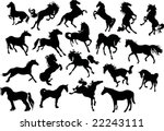 illustration with horse... | Shutterstock .eps vector #22243111