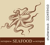 octopus. vector. detailed | Shutterstock .eps vector #222455410