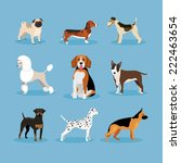 icons dogs set isolated on blue ... | Shutterstock . vector #222463654