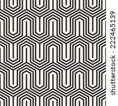 vector seamless pattern. modern ... | Shutterstock .eps vector #222465139