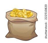full sack of golden coins... | Shutterstock .eps vector #222510820