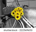 bicycle decorated with... | Shutterstock . vector #222569653