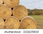 Hay Bales  Straw Rolls  On A...