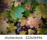 autumn background  | Shutterstock . vector #222636946