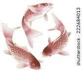 japanese carp | Shutterstock . vector #222684013