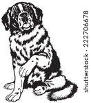 dog saint bernard breed ... | Shutterstock .eps vector #222706678