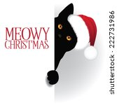 meowy christmas cat background... | Shutterstock .eps vector #222731986