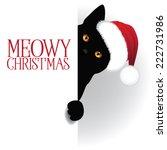 meowy christmas cat background... | Shutterstock .eps vector #222731986