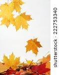 falling autumn leaves... | Shutterstock . vector #222753340