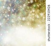 christmas card  | Shutterstock . vector #222910426