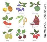 fruits and berries. set  | Shutterstock .eps vector #223001284