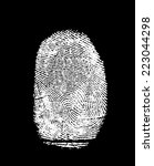 white fingerprint  isolated on... | Shutterstock . vector #223044298