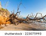 Natural Erosion Along The...
