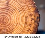 wooden cut pine background | Shutterstock . vector #223133236