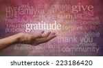 gratitude attitude   female... | Shutterstock . vector #223186420