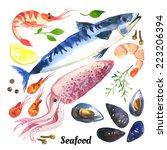 mackerel. scomber. watercolor... | Shutterstock .eps vector #223206394