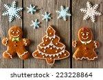 christmas homemade gingerbread... | Shutterstock . vector #223228864