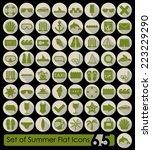 set of summer flat icons | Shutterstock . vector #223229290
