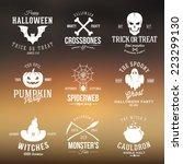 vintage typography halloween... | Shutterstock .eps vector #223299130