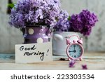 Two Tone Lilac Flowers In A...