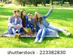 happy friends on picnic in park | Shutterstock . vector #223382830