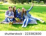 happy friends on picnic in park | Shutterstock . vector #223382830