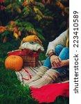 autumn mood | Shutterstock . vector #223410589