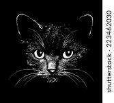 cat head graphic design vector... | Shutterstock .eps vector #223462030
