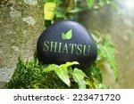 "the word ""shiatsu"" on a stone... | Shutterstock . vector #223471720"
