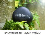 the word  well being on a stone ... | Shutterstock . vector #223479520