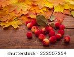 Autumn Leaves End  Apples On...