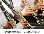 Clarinet Player Musical...