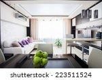 interior kitchen. modern... | Shutterstock . vector #223511524