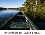 reflects of the jungle on the... | Shutterstock . vector #223517800