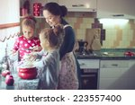 mother with her 5 years old... | Shutterstock . vector #223557400