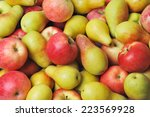 apples and pears | Shutterstock . vector #223569928